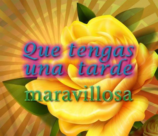 Buenas Tardes Amig@s Que-tengas-una-tarde-maravillosa-534x462